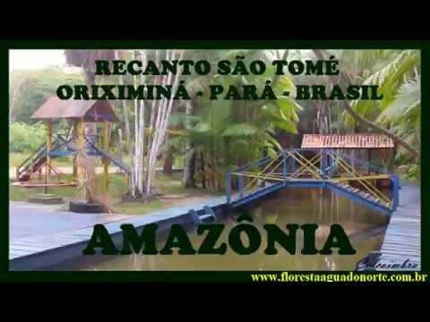 Amazônia - Oriximiná - Recanto São Tomé -  Celcoimbra - FAN