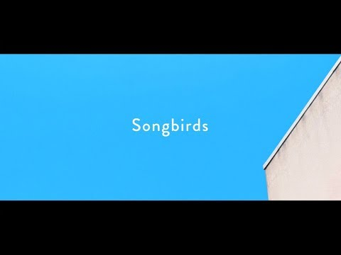 , title : 'Homecomings - Songbirds(Official Music Video)'