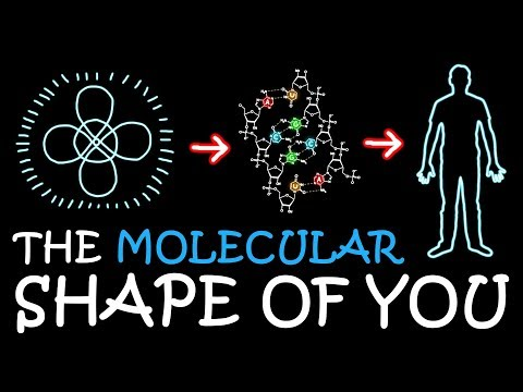 The Molecular Shape of You (Ed Sheeran Parody)