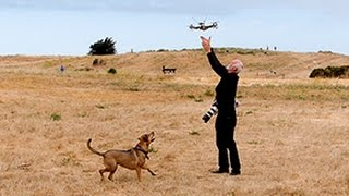 """http://bukaymedia.com. This dog is fascinated with the strange Frisbee-like object flying above. However, the object doesn't behave or land like a typical Frisbee! It is a remote controlled vehicle being controlled by a person wearing special goggles that provide a 3D view of what it looks like from a 3D camera mounted on the helicopter and wirelessly transmitted to the goggles. This was recorded at the FPV Explorers SF Bay Area Meet-up gathering at Cesar Chavez Park in Berkeley, CA. The initials FRP stand for """"First Person View,"""" hence the use of special goggles that are seen in this video. For more information about this Meetup group visit http://www.meetup.com/FPVexplorers."""