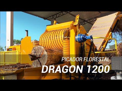 Picador Florestal Dragon 1200 com produção de 300 m3/h e capacidade para tora de 700 mm de diâmetro.