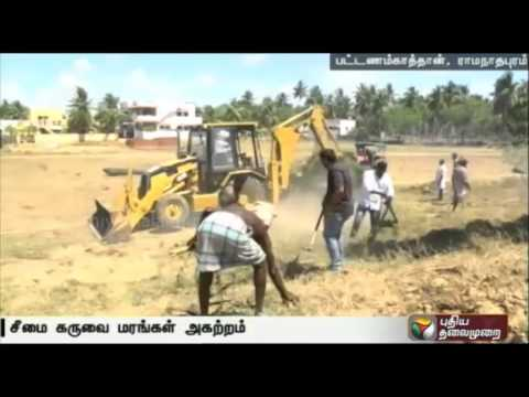 Puthiya-Thalaimurais-Nammal-Mudiyum-team-clears-seemai-karuvel-trees-in-Ramanathapuram