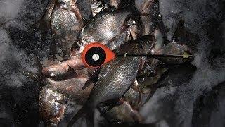 Зимняя рыбалка - ловля подлещика