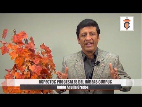 Programa 43 - Aspectos Procesales del Hábeas Corpus -Tribuna Constitucional