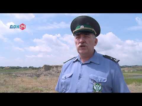 Управление Россельхознадзора выявило на территории Ростовской области незаконный песчаный карьер