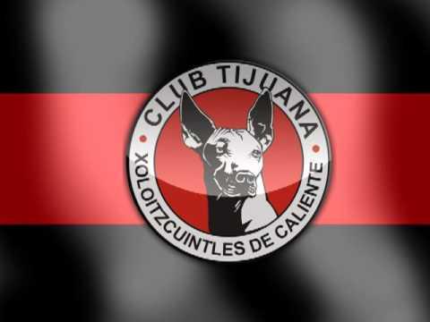 Himno de Xoloitzcuintles - La Masakr3 - Tijuana