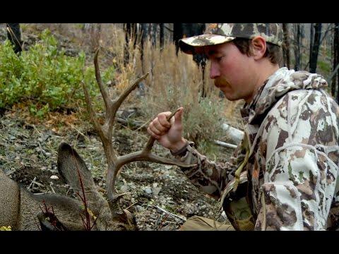 First Lite's Ryan Callaghan Hunts a Public Land Mule Deer