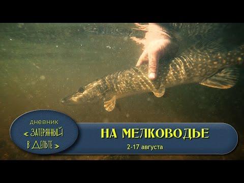 рыбалка в астрахани на волге база форафиш