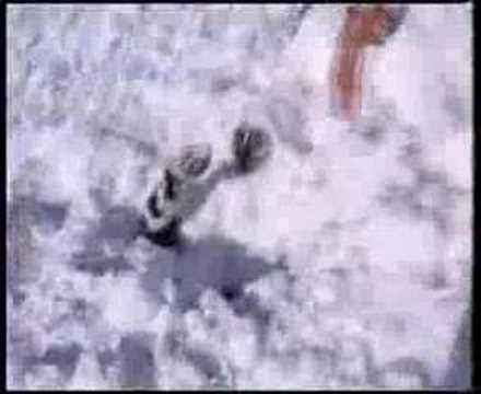 VIDEO: Lavína pod Kasprovym  vrchom