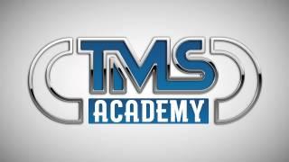 Enrico Cerroni - Lean Sigma Framework - TMS Academy