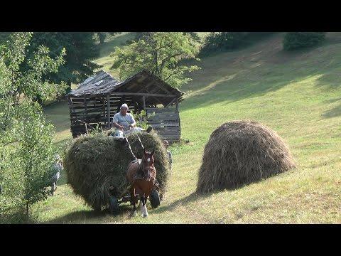 Romania, Transylvania Hay Camp 2015 Part 3 - Thời lượng: 21 phút.