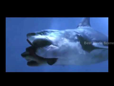 [BEST MOVIE SCENE HD] 5 Headed Monster SHARK Attack