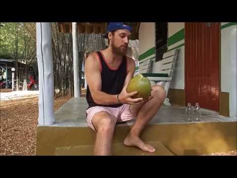 How to: Easily Open a Coconut without Tools