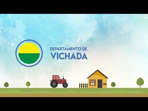 Prevéngase para la época de lluvias en Vichada