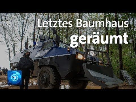 Hambacher Forst: Polizei räumt letztes Baumhaus