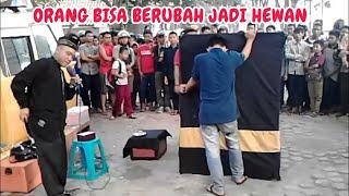 Download Video Orang Bisa Berubah Jadi Hewan Part I MP3 3GP MP4