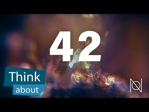 Sinn des Lebens? 42