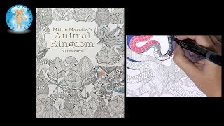 Millie Marotta's Animal Kingdom 50 Postcards Adult Coloring Book Octopus - Family Toy Report