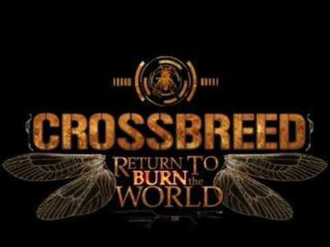 Crossbreed - Pure Energy