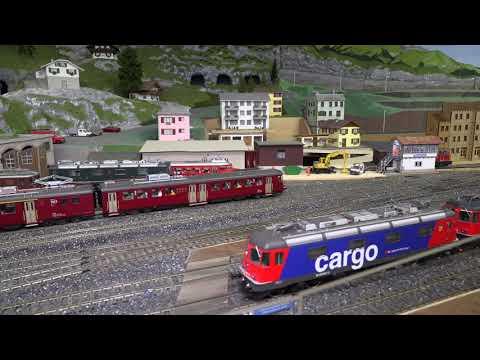 Rheintalischer Eisenbahn Amateur Klub 2020
