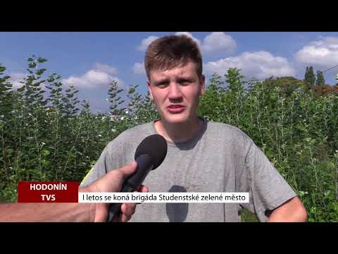 TVS: Deník TVS 2. 8. 2018