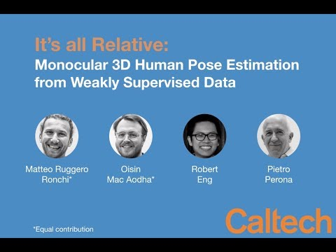It's all Relative: Monocular 3D Human Pose Estimation from Weakly Supervised Data - BMVC 2018