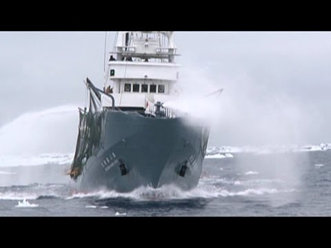 Japanese Security Vessel Shonan Maru No. 2 Deploys LRAD Against Sea Shepherd Helicopter