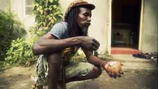 Download Lagu Organic farming / Ital cooking Mp3