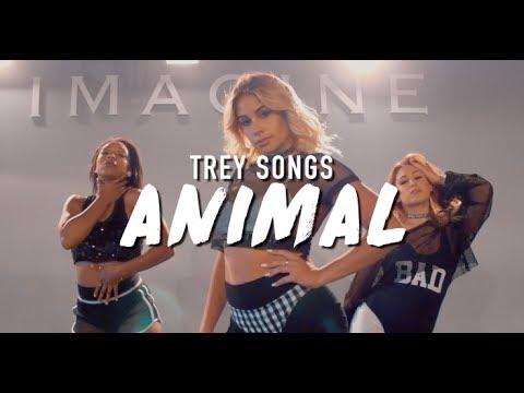 Trey Songz | Animal | Brinn Nicole Choreography