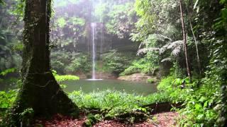 Video Natur Meditation - Regenwald Sounds und Regen MP3, 3GP, MP4, WEBM, AVI, FLV Maret 2018