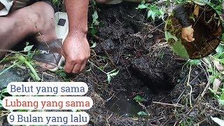 Video Mancing Belut di Kaki Gunung Ceremai(Best Fishing Failed) MP3, 3GP, MP4, WEBM, AVI, FLV Januari 2019