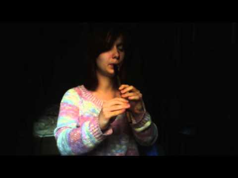 Foggy Dew (tin whistle)