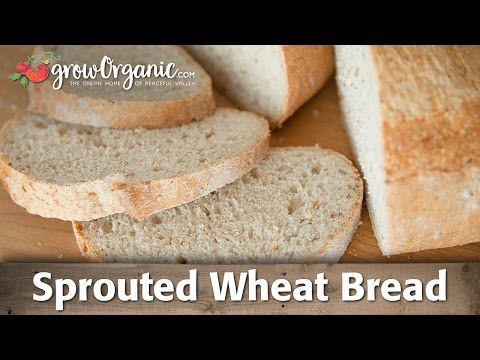 How to Make Sprouted Whole Wheat Bread