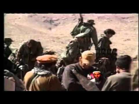 Osama bin Laden dead: US special forces kill Al Qeada leader during raid : 2011
