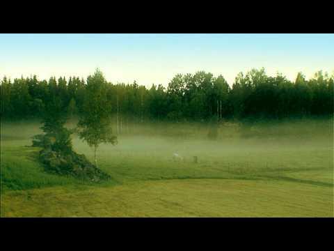 Karlskronahem - natur