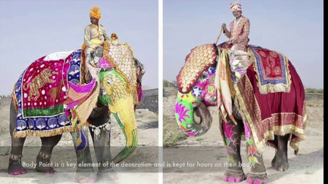 Decorating Elephants at Hathi Gaon in Rajasthan