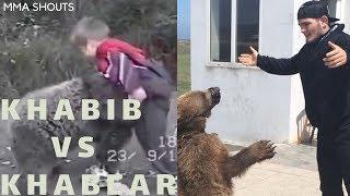 Video Khabib Nurmagomedov vs  Bear MP3, 3GP, MP4, WEBM, AVI, FLV November 2018