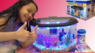 Aquarium Starter Kit Fun With Alanna!