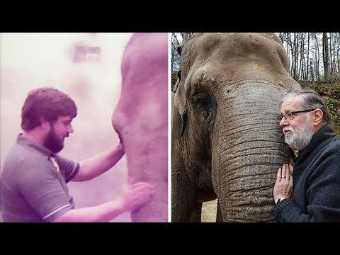 Neunkirchen: Herzerwärmend - Elefant erkennt Pfleger nach 30 Jahren wieder (Neunkircher Zoo)