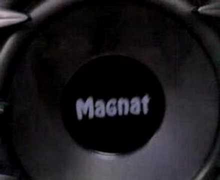 Magnat 300 reflex (видео)