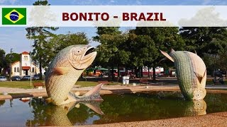 Bonito Brazil  city images : Bonito - Brazil - beautiful nature