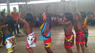 Video Estudiante del grado 2 de la  institución educativa indígena de Union Chogorodo MP3, 3GP, MP4, WEBM, AVI, FLV Agustus 2018