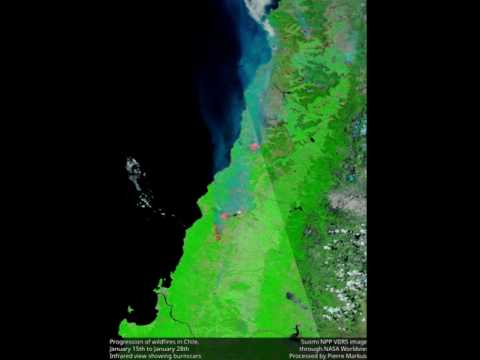 Deadly bushfires ravage central Portugal