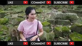 Video MONYET MESUM RAYU PEMBANTU CANTIK HINGGA DI GITUIN MP3, 3GP, MP4, WEBM, AVI, FLV April 2018