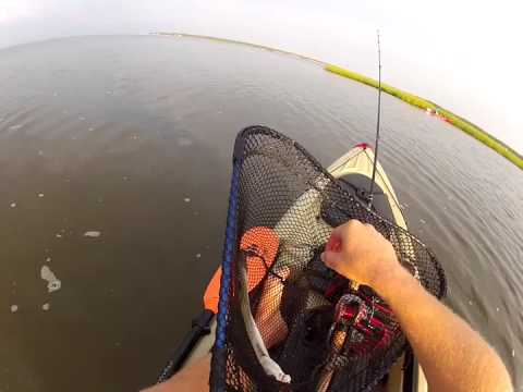 Speckled Trout out of the Kayak