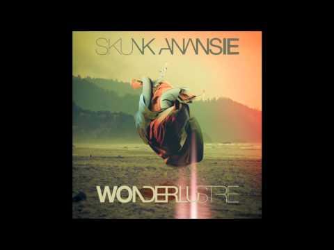 Tekst piosenki Skunk Anansie - I Will Stay But You Should Leave po polsku