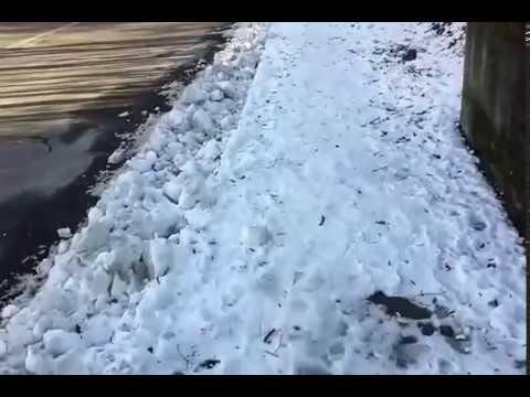 Sos ghiaccio, guardate come sono ridotti i marciapiedi di Sagnino