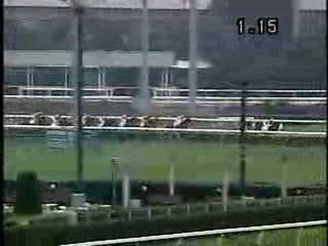 「[競馬]直線入り口で外にヨレながら競走中止と思いきや、奇跡の逆転を見せるスピードマンテン」のイメージ