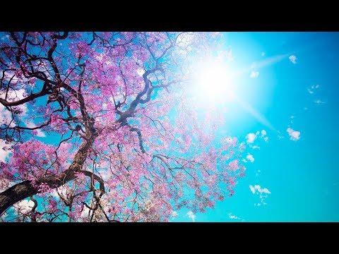 Romantická relaxačná hudba pre stresovú pomoc