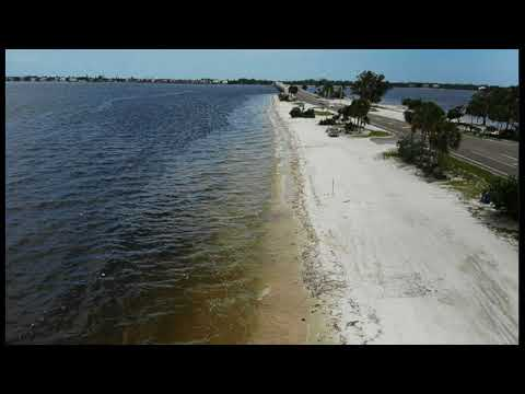 Florida Governor Declares State of Emergency Over Red Tide